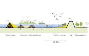 Posad-1208-Ecologisch-systeem-Markerkmeer-IJmeer-Doorsnede-drijvend-eiland