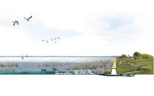 Posad-1208-Ecologisch-systeem-Markerkmeer-IJmeer-Impressie-moeras-veenmatten