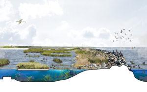 Posad-1208-Ecologisch-systeem-Markerkmeer-IJmeer-Impressie-stepping-stones-2