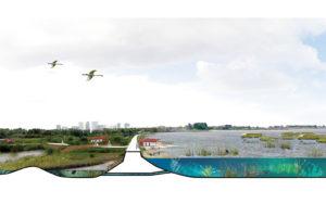 Posad-1208-Ecologisch-systeem-Markerkmeer-IJmeer-Impressie-vismigratie